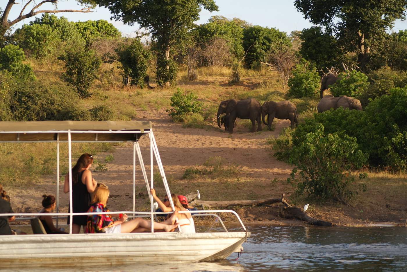 Bootsfahrt im Chobe Nationalpark Botswana Untouched Lodge Safari Rundreise