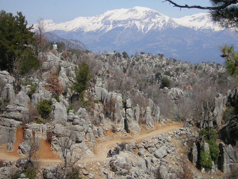 Flora Und Fauna der Türkei Taurusgebirge