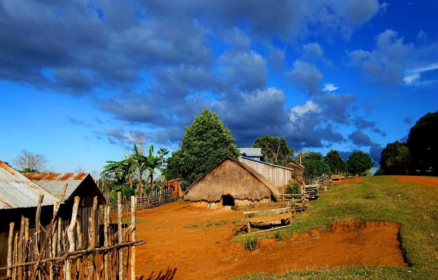 Landwirtschaft in Kambodscha